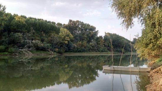 Torokszentmiklos, ฮังการี: A Közép-Tisza Vidék határtalan nyugalma...  Megközelíthető földúton az Óballai gátőrház felől.