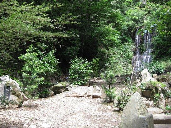 Kannon Falls