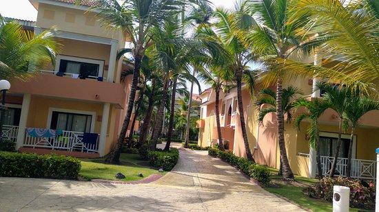 Bahia Principe Grand Punta Cana: Terrain super bien entretenue.