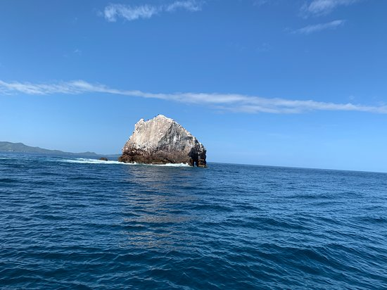 Two-Dive Tour at Las Catalinas Islands: Elephant Rock!