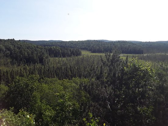 Algonquin Park Region, แคนาดา: Visitor Centre lookout deck