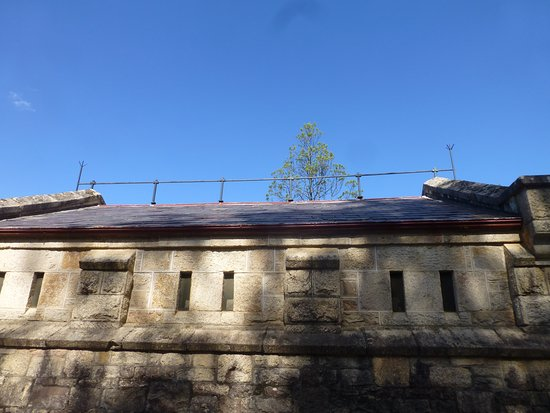 Lightning rod along the roof line