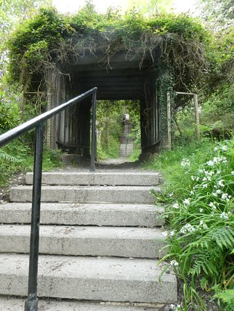 The walkway to the beach has 9 sets of stairs.