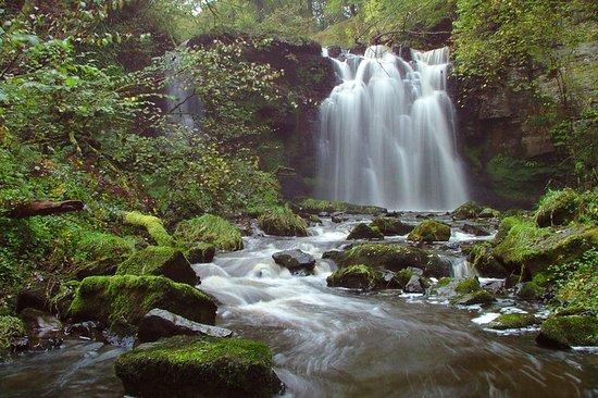 Lynn falls dalry