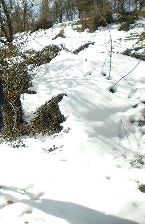 Neve a Gavoi