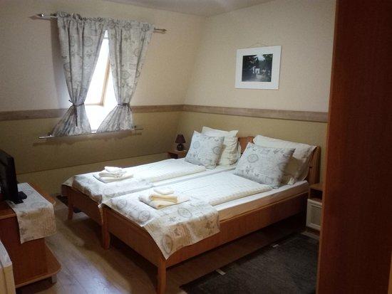 Hongrie centrale, Hongrie: 2-es szoba : 2 ágyas, fürdőszobás, kb 22nm. TV, WIFI, Hűtő, 8000,-Ft/ fő/ éj