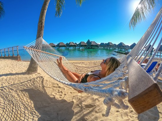 Relaxing hammock on the beach.
