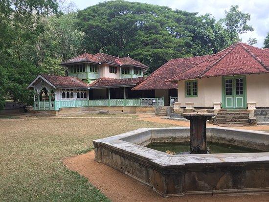 Suriyakanda照片