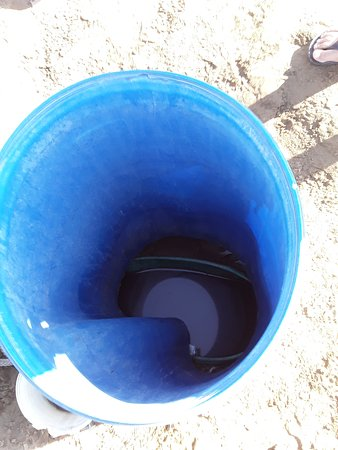 Namibia: The way they collect water in the Desert.