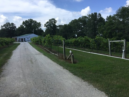 Persimmon Ridge Winery
