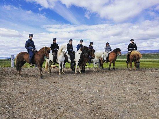 Galdrahestar Riding Tours