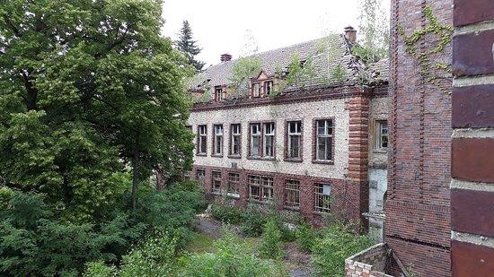 Beelitz-billede