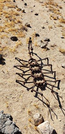 Desert Art - Taken By Foodnando