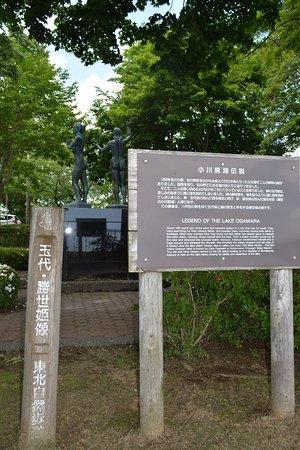 Tamayo Katsuyohime Zo