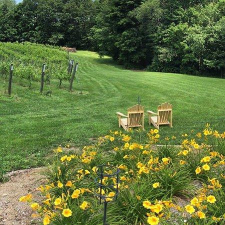 Squamscott Vineyard & Winery