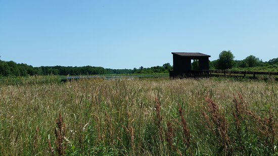 Baldwinsville, نيويورك: Wildlife blind at Smokey Hollow Road, Lysander, NY overlooking Greene Pond and meadows