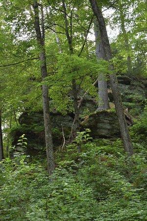 Rocky Arbor State Park (Wisconsin Dells) - Book in Destination 2019