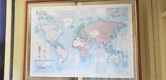 Zeer professionele uitleg koffiebranderij!