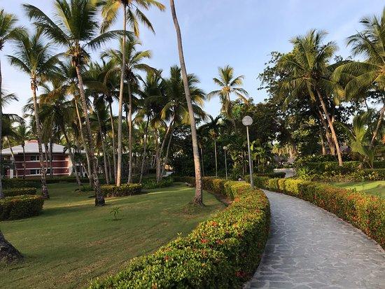 Landscape - Grand Palladium Bavaro Suites Resort & Spa Photo