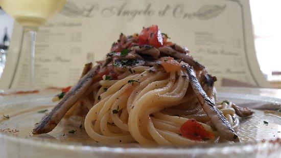 La nostra Acciugata!!! – Foto de Trattoria L'Angelo d'Oro, Livorno - Tripadvisor