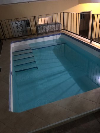 Scarlett Guest House: Sparkling Swimming pool