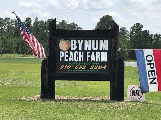Ellerbe, NC: Bynum's Peach Farm Sign