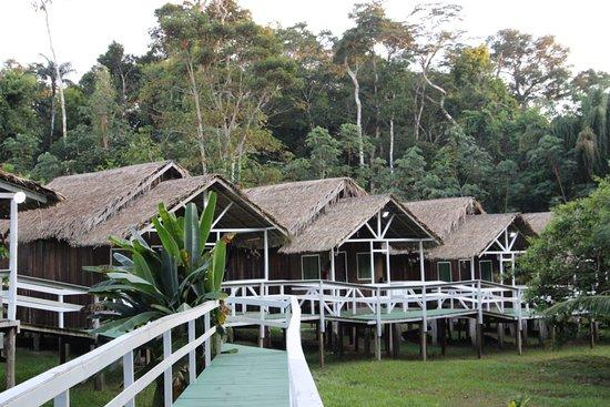 Apui: Chalés/cabanas Pousada Amazon Roosevelt