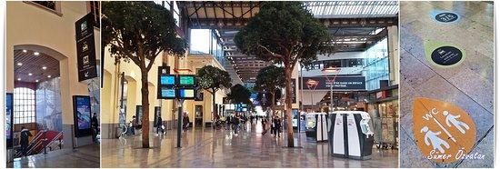 Gare de Marseille Saint-Charles: Marseille Saint-Charles Tren Garı'nın içinden.