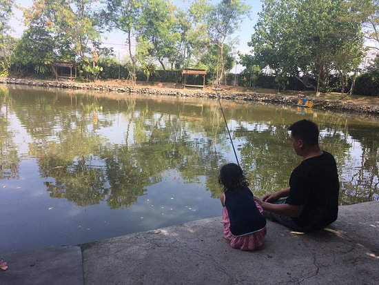 Monstero Fishing Park