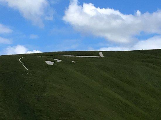 写真White Horse Hill枚
