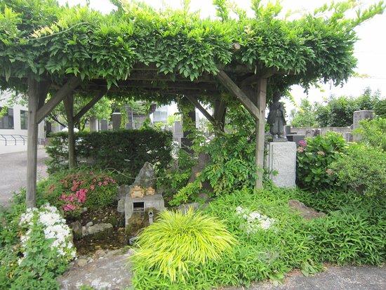 Myosho-ji Temple: 5湧水と花壇