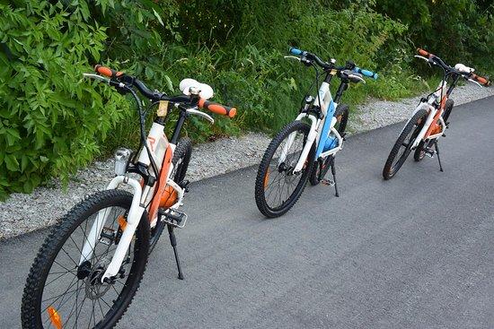 Fahrradverleih Forchheim