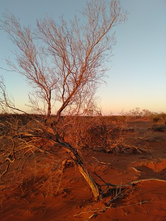 Фотография Roxby Downs