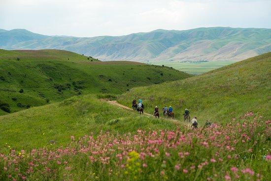 Kemin, สาธารณรัฐคีร์กีซ: Horse trek