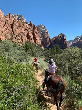 Canyon Trail Rides: On Chester