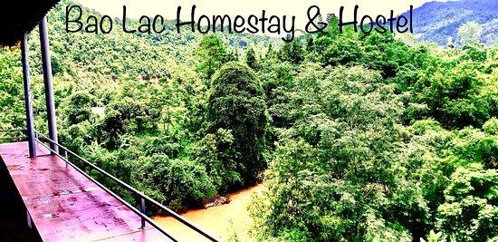 At Bao Lac homestay & hostel