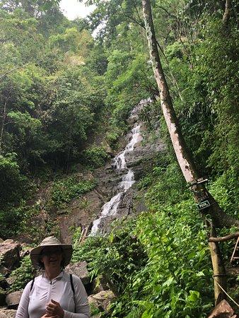 Bocawina Rainforest Lodge & Adventures: Antelope Falls
