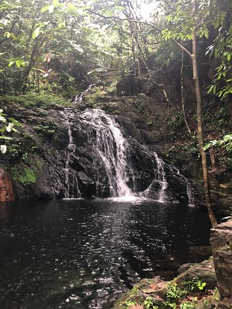 Bocawina Rainforest Lodge & Adventures: The pool at the top of Antelope Falls