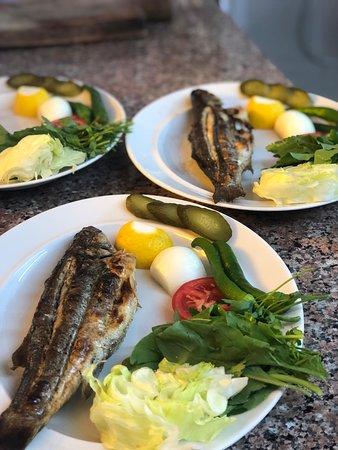 Gerze, Turchia: Küpler de ızgara balık