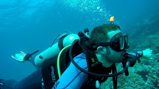83b91340d787c9 Bali Diving Academy Lembongan (Nusa Lembongan) - 2019 All You Need to Know  BEFORE You Go (with Photos) - TripAdvisor