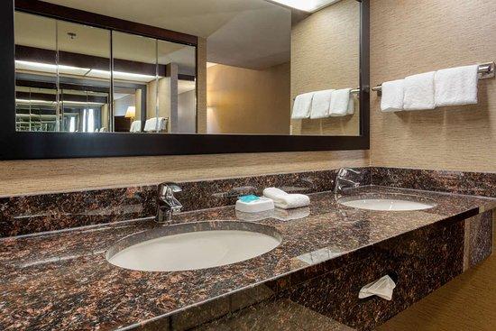 Drury Inn & Suites Atlanta Airport: bathroom double dark