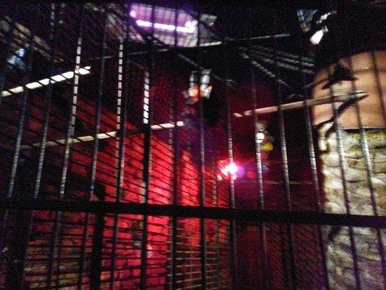 Mozambique Restaurant: Bird cage