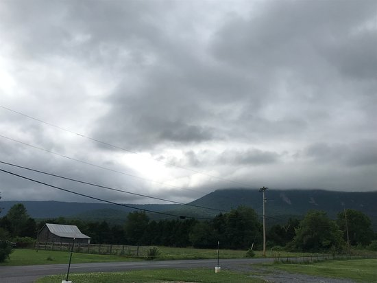 View from the parking lot at Daisy's Diner at Cooter's Luray