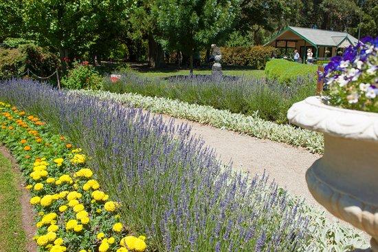 Beautiful gardens at SkyHigh Mount Dandenong