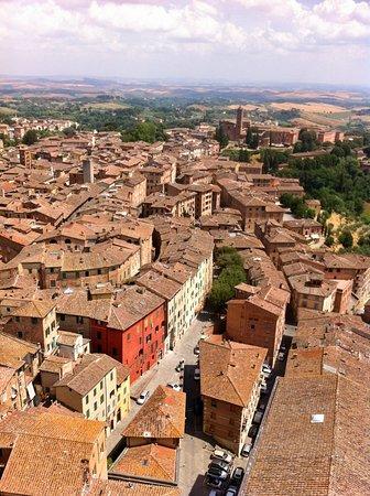 Vista su Siena e dintorni dalla cima della Torre. luglio 2019