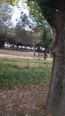 Parque del Mediodia