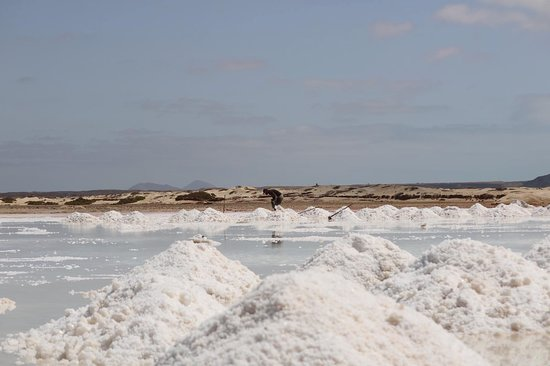 Paradise Adventures with Gus: Salt Ponds being mined by hand