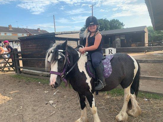 Montys Equestrian Centre
