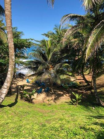 Zdjęcie Boca del Drago