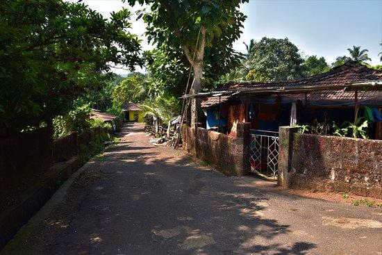 Surla, อินเดีย: Village street